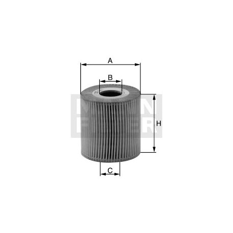 Filtro olio Daf trucks (MANN filter)